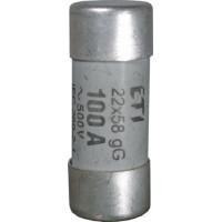 CH22 gG 63A bizt.